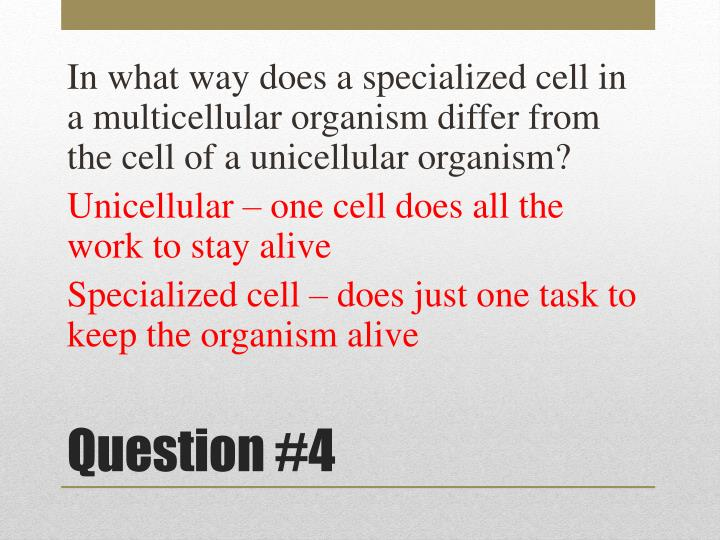 In what way does a specialized cell in a multicellular organism differ from the cell of a unicellular organism?