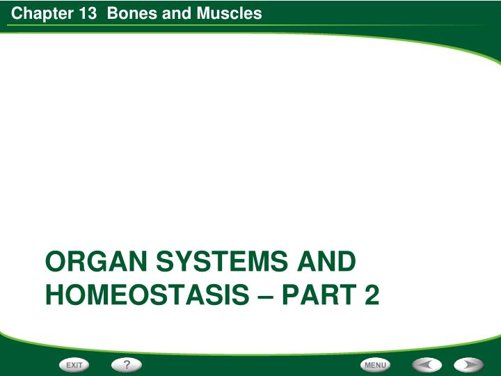 Organ systems and homeostasis – part 2