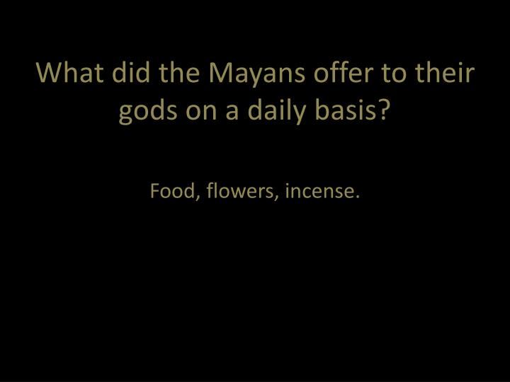 What did the Mayans offer to their gods on a daily basis?