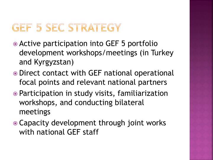 GEF 5 SEC strategy