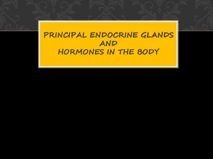 Principal endocrine glands