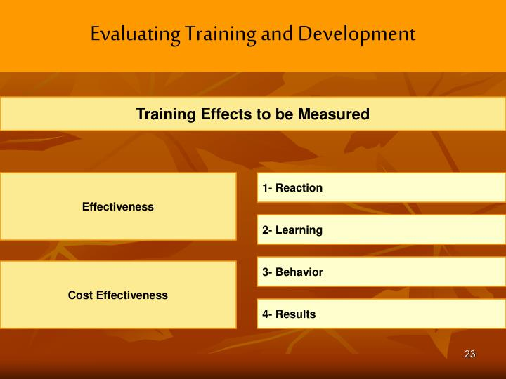 Evaluating Training and Development