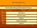 the training process2
