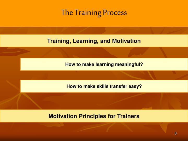 The Training Process