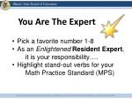 you are the expert