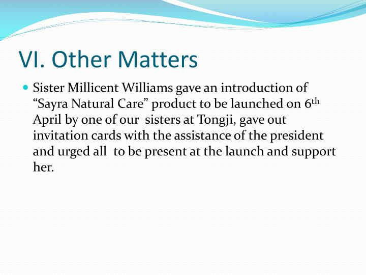 VI. Other Matters