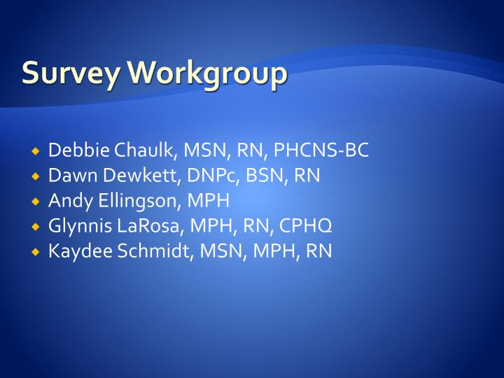 Survey workgroup