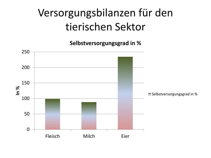 Versorgungsbilanzen für den