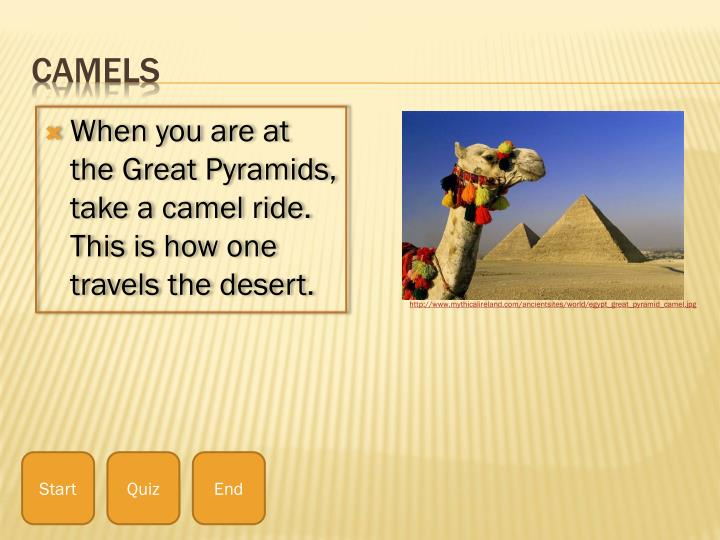 When you are at the Great Pyramids, take a camel ride. This is how one travels the desert.