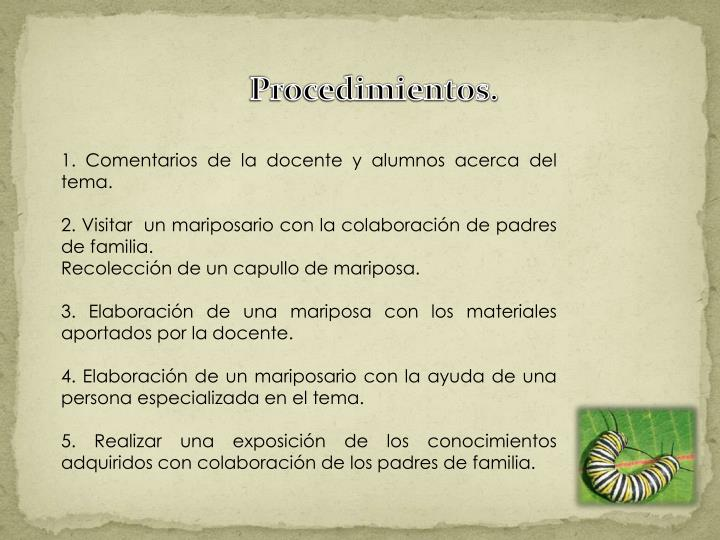 Procedimientos.