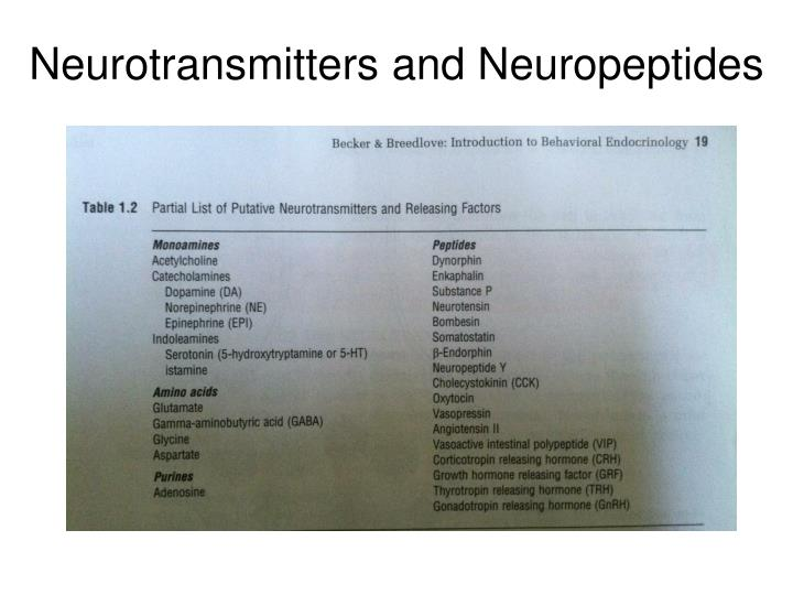 Neurotransmitters and Neuropeptides