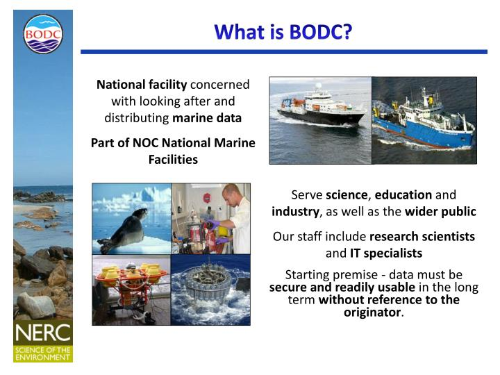 what is bodc
