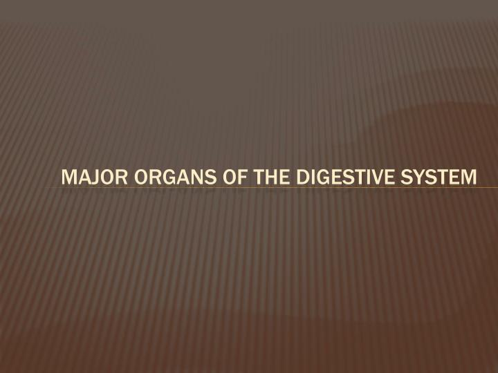 Major Organs of the digestive System