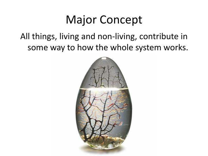 Major Concept