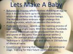 lets make a baby