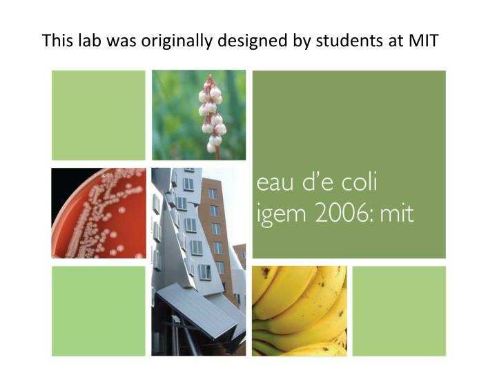 this lab was originally designed by students at mit