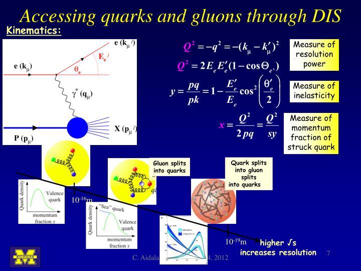 Accessing quarks and gluons through DIS