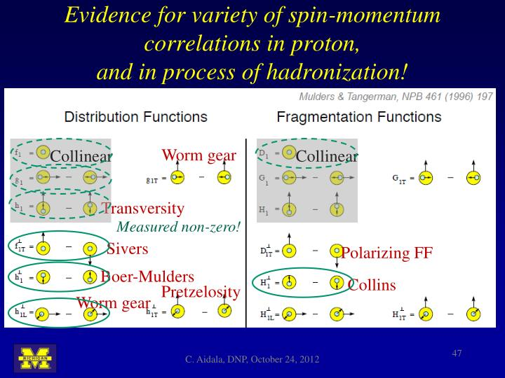Evidence for variety of spin-momentum correlations in proton,