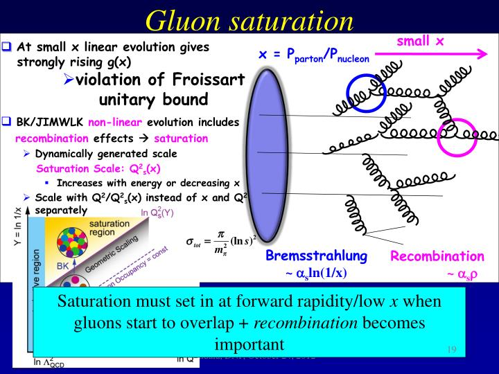 Gluon saturation