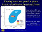 pinning down sea quark gluon helicity distribution functional forms