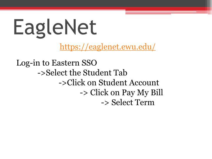 EagleNet