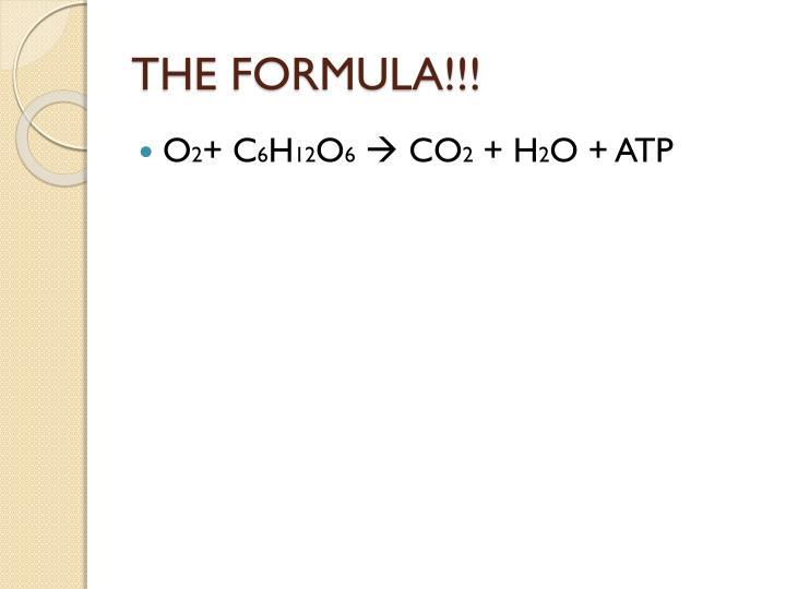 THE FORMULA!!!
