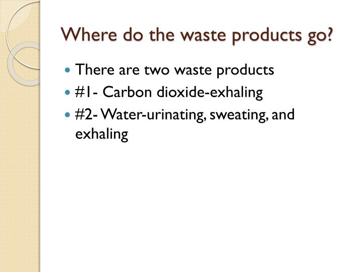Where do the waste products go?