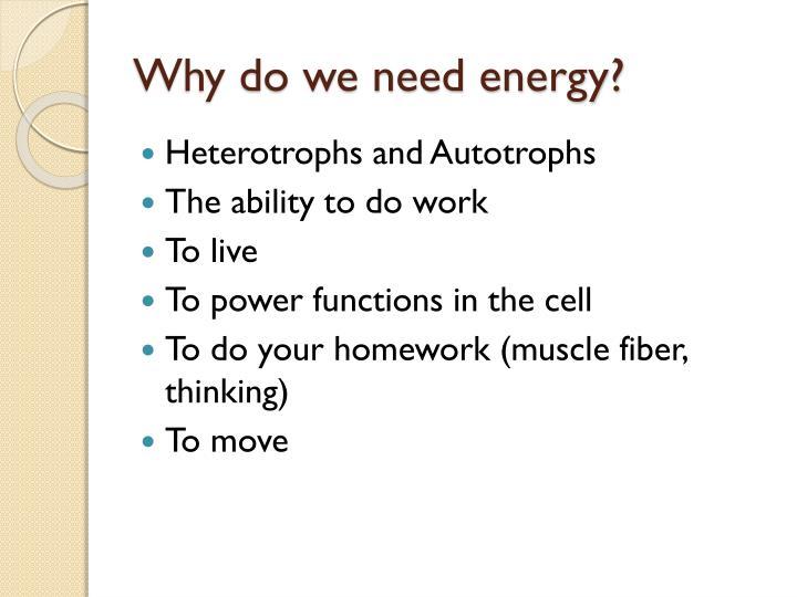 Why do we need energy?