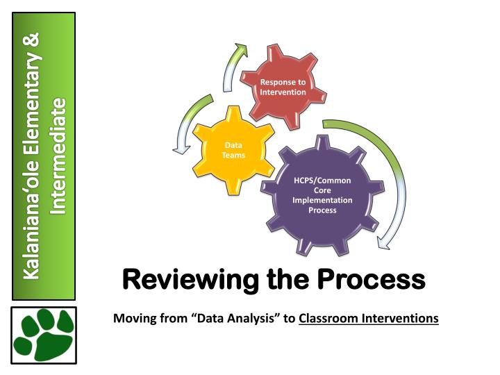 Reviewing the Process