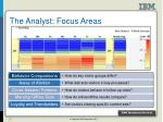 the analyst focus areas