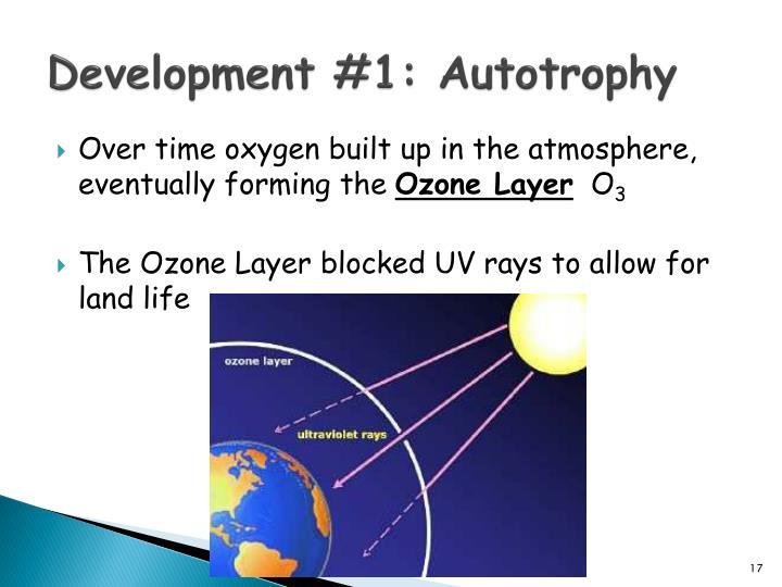 Development #1: Autotrophy