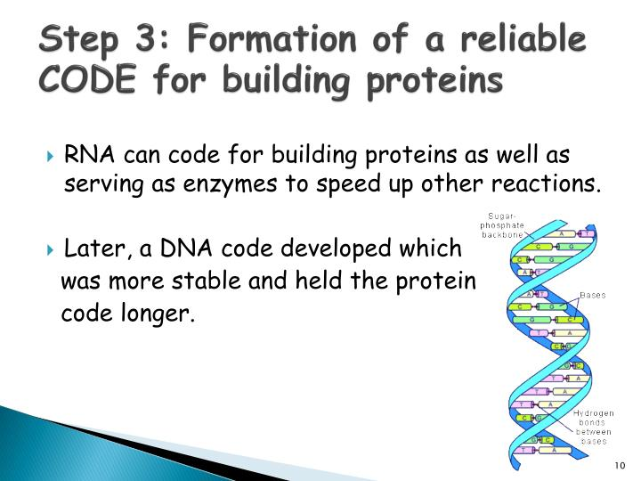 Step 3: Formation of a reliable CODE for building proteins