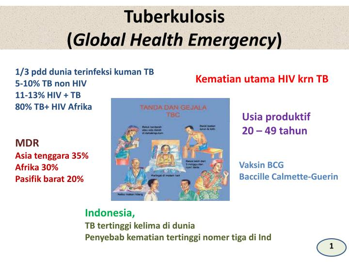 Tuberkulosis global health emergency