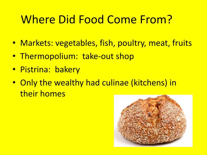 Where Did Food Come From?