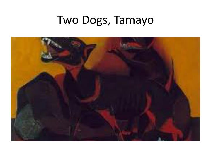 Two Dogs, Tamayo