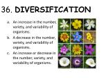 36 diversification