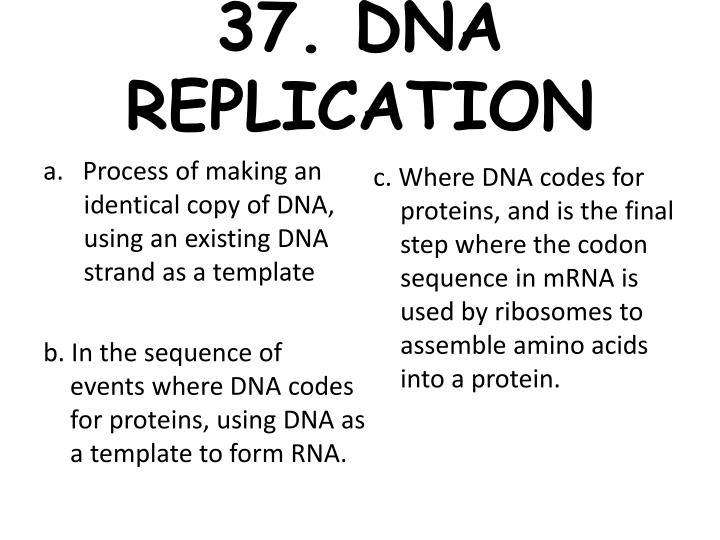 37. DNA REPLICATION