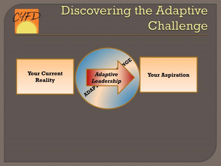 Discovering the Adaptive Challenge