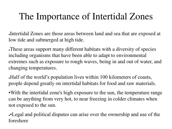 The Importance of Intertidal Zones