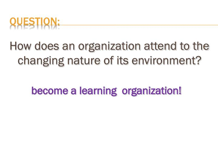 How does an organization attend to the changing nature of its environment?