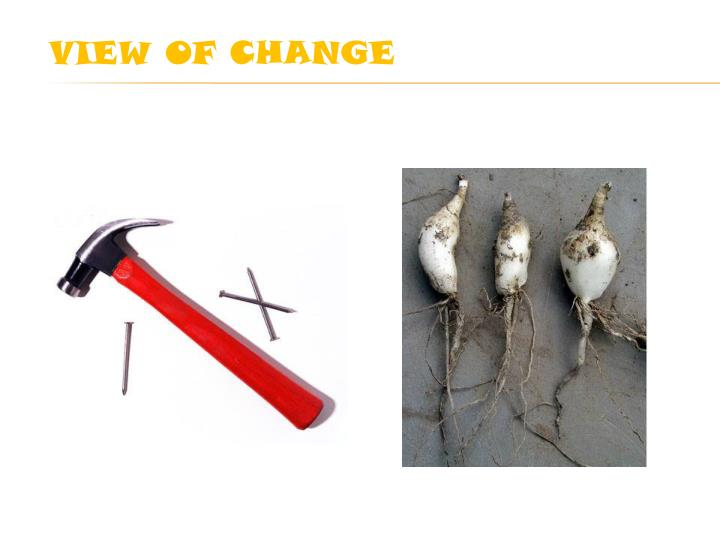 VIEW OF CHANGE