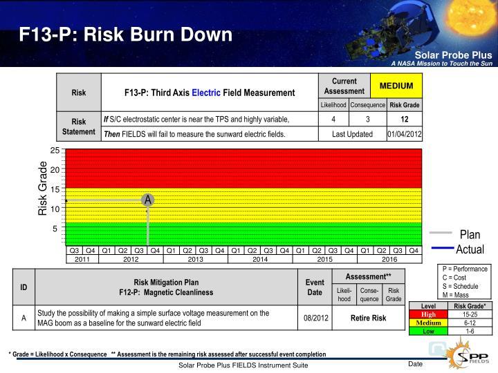 F13-P: Risk