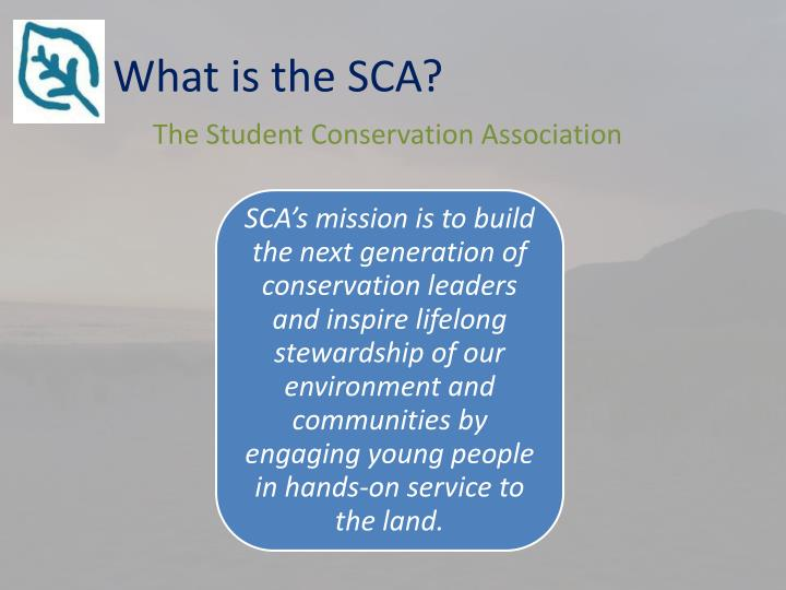 What is the SCA?