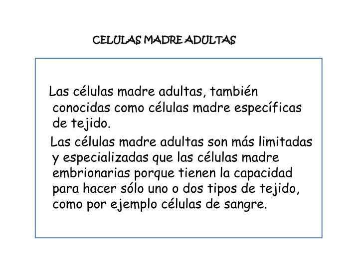 CELULAS MADRE ADULTAS