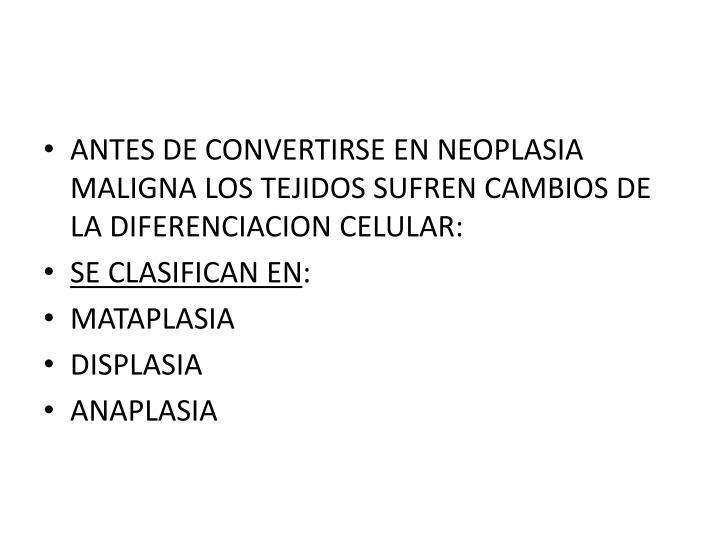 ANTES DE CONVERTIRSE EN NEOPLASIA MALIGNA LOS TEJIDOS SUFREN CAMBIOS DE LA DIFERENCIACION CELULAR: