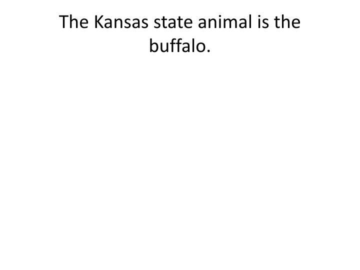 The Kansas state animal is