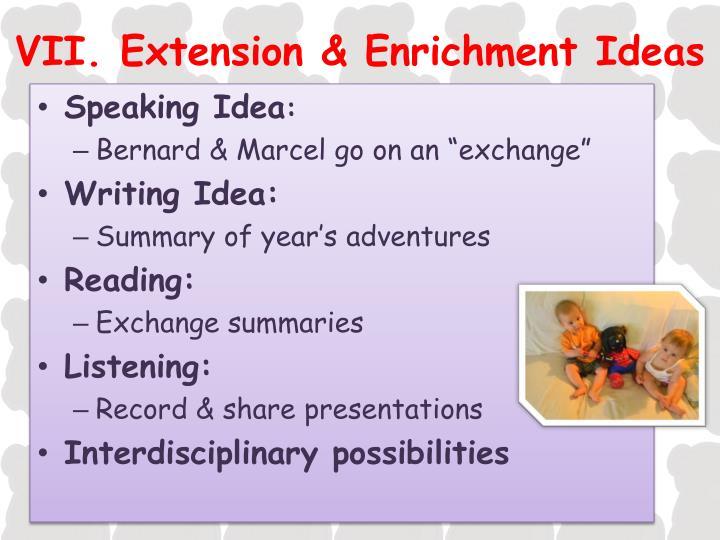 VII. Extension & Enrichment Ideas