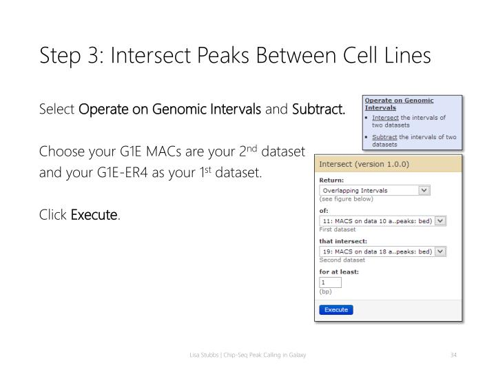 Step 3: Intersect Peaks Between Cell Lines