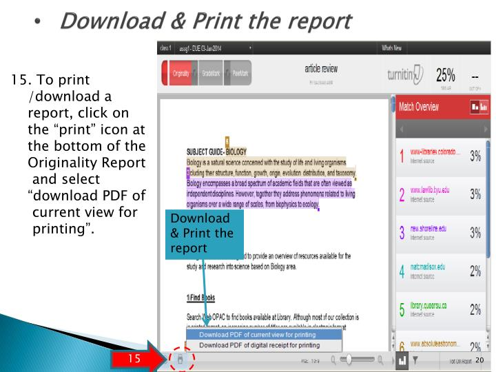 Download & Print the report