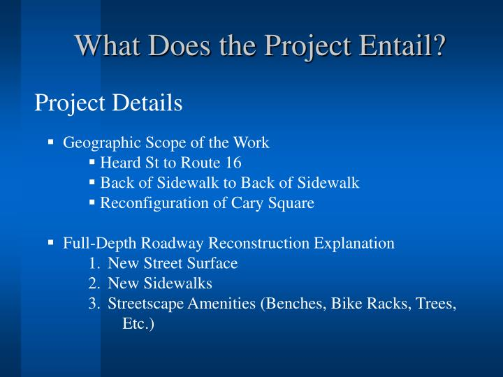 What Does the Project Entail?